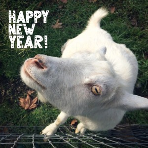 It's the year of the goat!