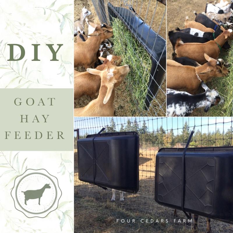 DIY Goat Hay Feeder
